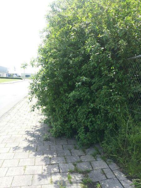 vestaweg-zuiderkruisweg1